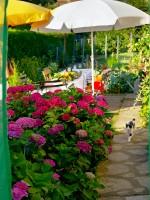 Garten 29