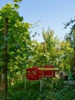 Garten 16