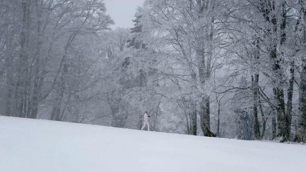 Schneelesung de neige